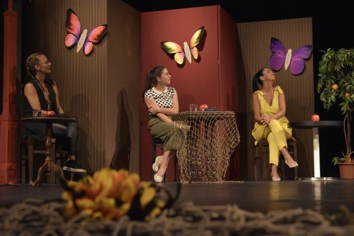 anketa motýľ